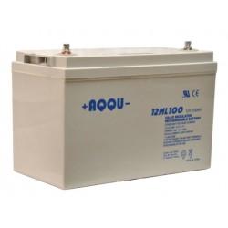 Аккумулятор AQQU 12ML100